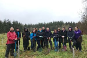 South West Lakes employees helping with tree planting at Roadford Lake