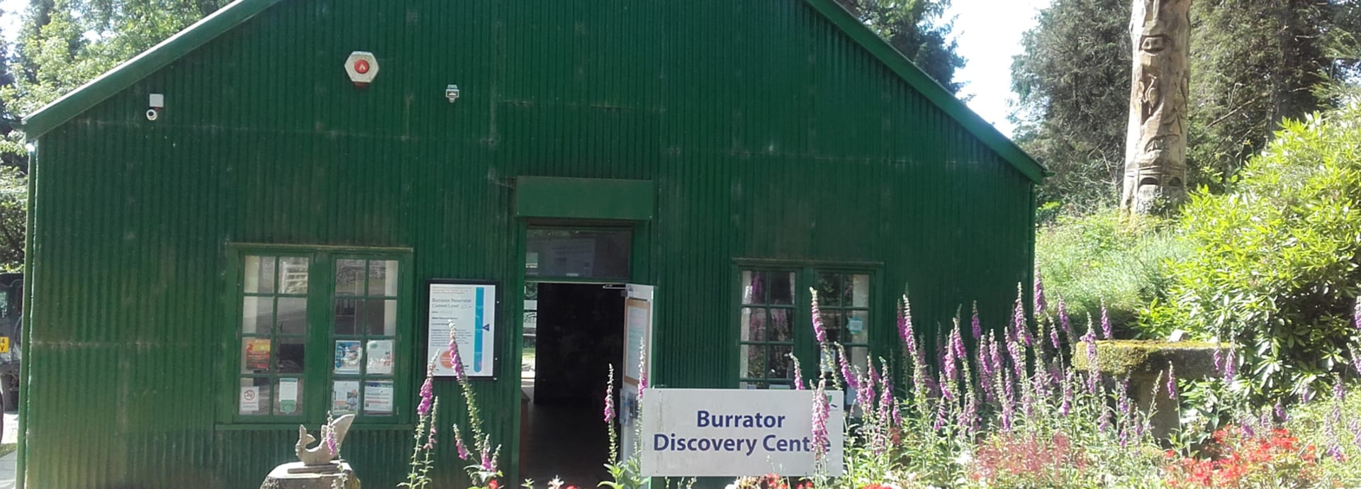 Burrator News 31 - July Monthly Newsletter