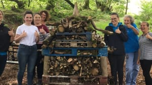 Bug Hotel Volunteering Event at Siblyback