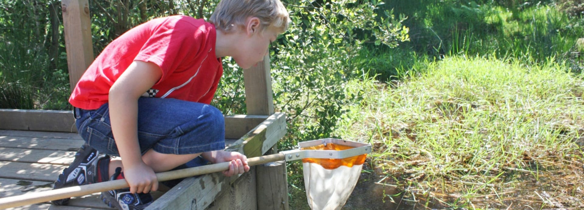 Things to do with the children outdoors this summer