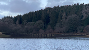 SW Lakes Weekly Trout Fishery Round Up - W/E 13 December 2020